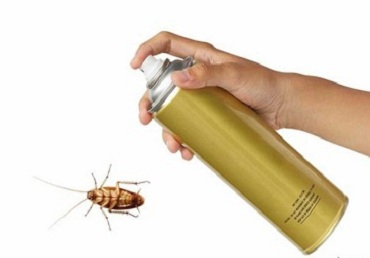 HOW TO MAKE INSECTICIDE